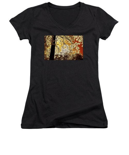 Women's V-Neck T-Shirt (Junior Cut) featuring the photograph Into The Golden Sun by Linda Unger
