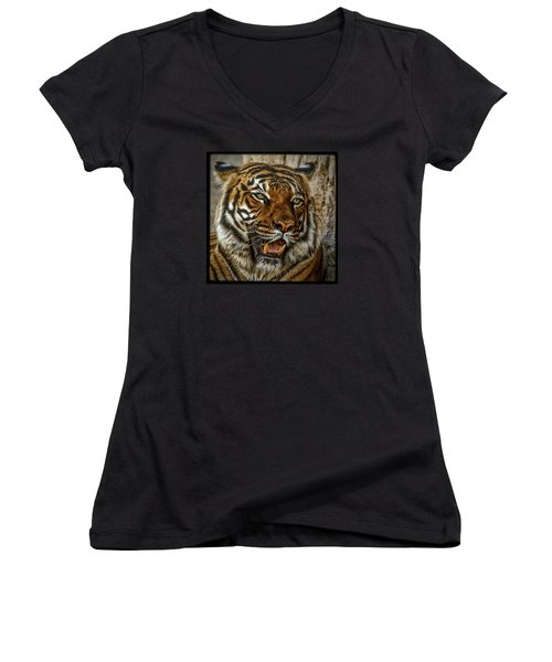 Women's V-Neck T-Shirt (Junior Cut) featuring the photograph Is This My Best Side by Elaine Malott