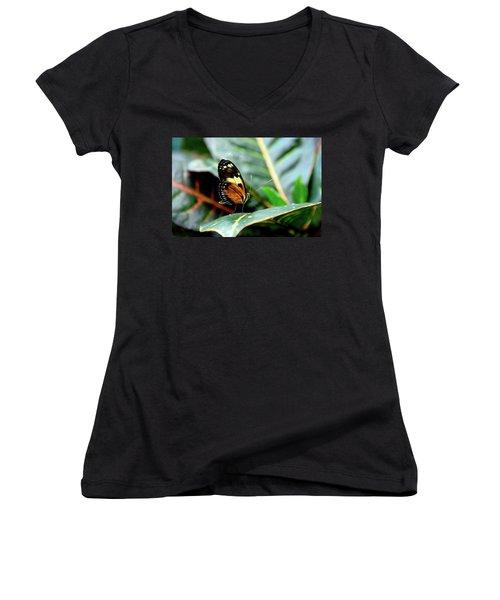 Ismenius Tiger Butterfly-2 Women's V-Neck