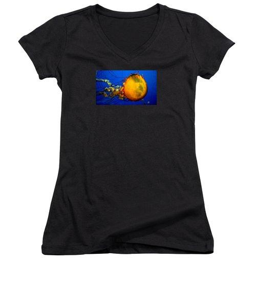 Jellyfish Women's V-Neck T-Shirt (Junior Cut) by David Gilbert