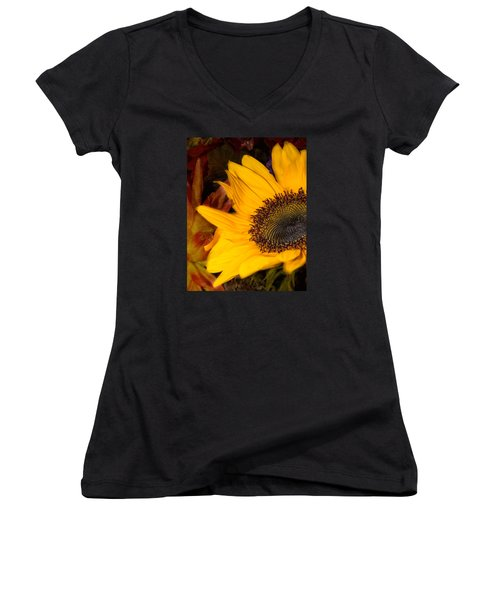 Jeweled Women's V-Neck T-Shirt (Junior Cut) by Arlene Carmel