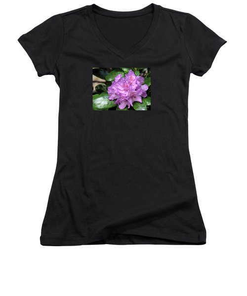 June Daphnoides Women's V-Neck T-Shirt (Junior Cut) by Chris Anderson