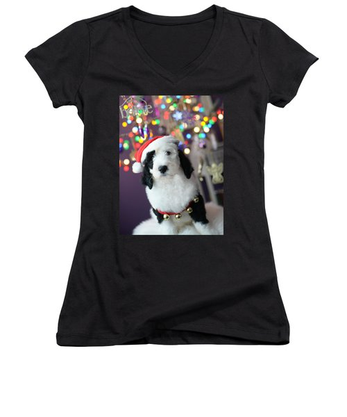 Women's V-Neck T-Shirt (Junior Cut) featuring the photograph Just Believe by Linda Mishler