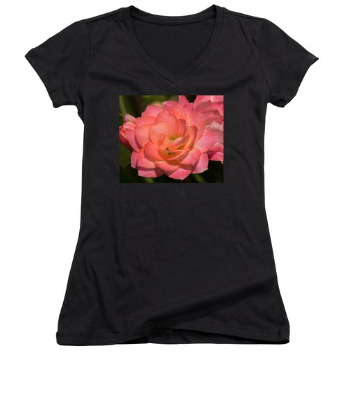 Kalanchoe Women's V-Neck T-Shirt (Junior Cut) by Arlene Carmel