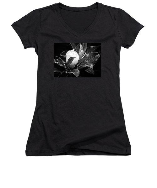 Kissed By Rain Women's V-Neck T-Shirt (Junior Cut) by Carolyn Marshall
