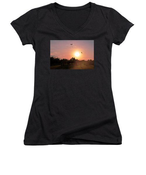 Kites Flying In Park Women's V-Neck T-Shirt (Junior Cut)