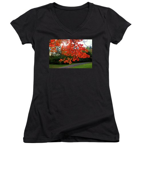 Knox Park 8444 Women's V-Neck