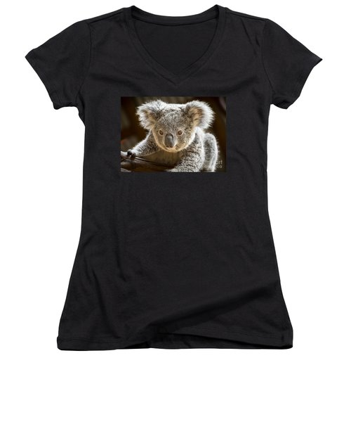 Koala Kid Women's V-Neck T-Shirt