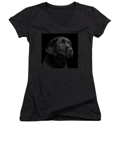 Women's V-Neck featuring the photograph Labrador Retriever Puppy Isolated On Black Background by Sergey Taran