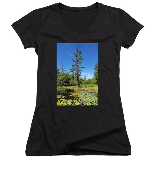 Women's V-Neck T-Shirt featuring the photograph Lake Birkensee Nature Park Schoenbuch Germany by Matthias Hauser