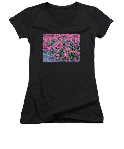Lantana Women's V-Neck T-Shirt (Junior Cut) by Betty Buller Whitehead