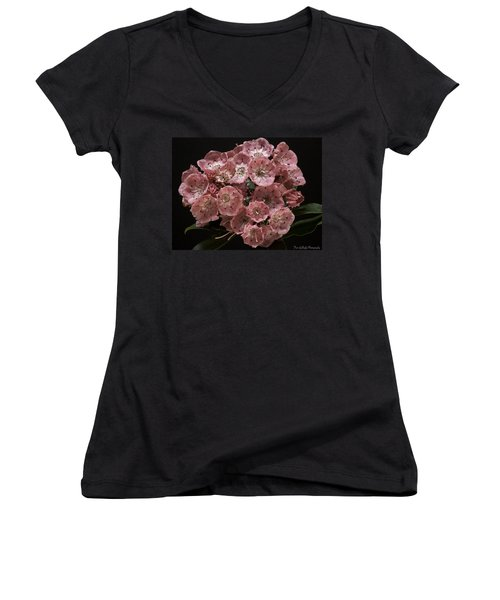 Laurel Women's V-Neck T-Shirt