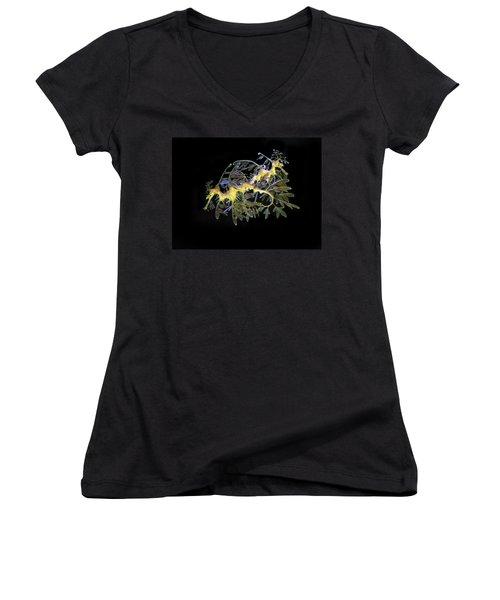 Leafy Sea Dragons Women's V-Neck T-Shirt (Junior Cut) by Anthony Jones