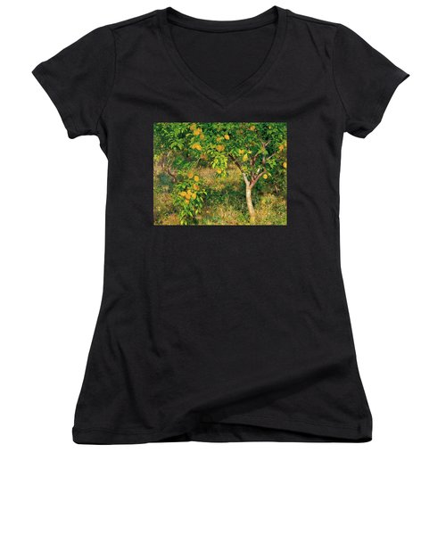Women's V-Neck T-Shirt (Junior Cut) featuring the painting Lemon Tree by Henry Scott Tuke