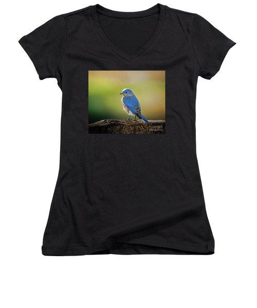 Lenore's Bluebird Women's V-Neck T-Shirt (Junior Cut) by Robert Frederick
