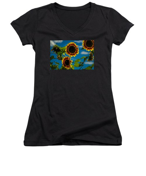 Women's V-Neck T-Shirt (Junior Cut) featuring the photograph Life Of A Bumble Bee by Jason Moynihan