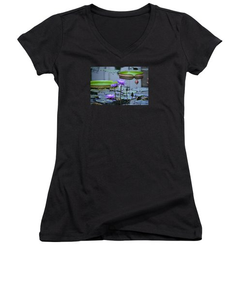 Lily Pond Wonders Women's V-Neck T-Shirt (Junior Cut) by Maria Urso