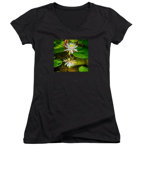 Lily Reflection Women's V-Neck T-Shirt (Junior Cut) by Jerry Cahill