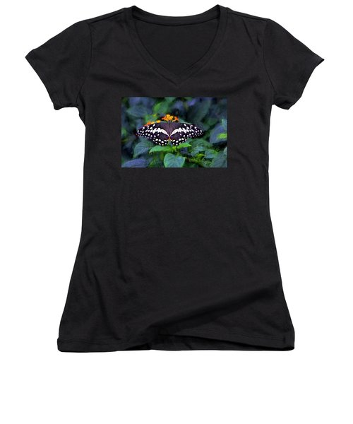 Women's V-Neck T-Shirt (Junior Cut) featuring the photograph Lime Swallow Tail by James Steele