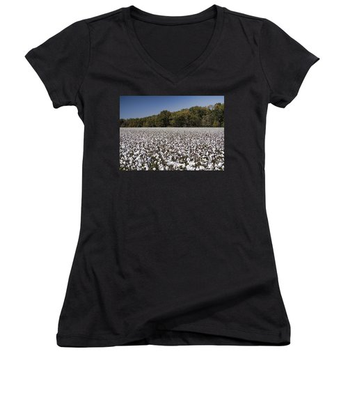 Limestone County Alabama Cotton Crop Women's V-Neck (Athletic Fit)