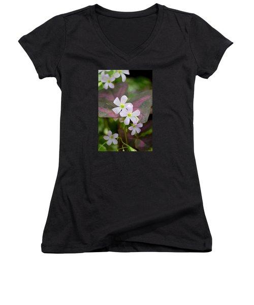 Little Twinkles Women's V-Neck T-Shirt (Junior Cut) by Deborah  Crew-Johnson