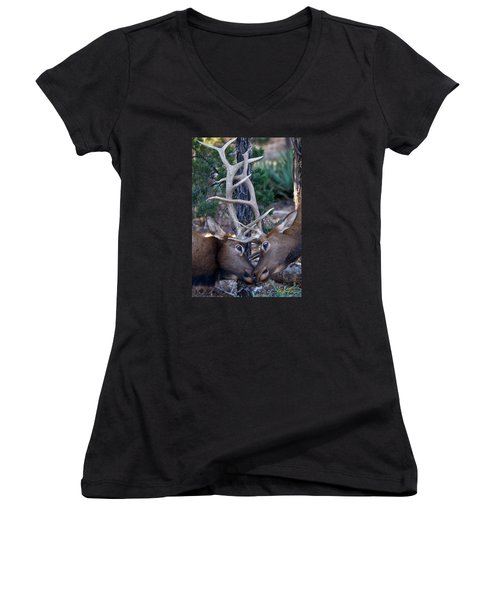 Locking Horns - Well Antlers Women's V-Neck T-Shirt (Junior Cut) by Rikk Flohr