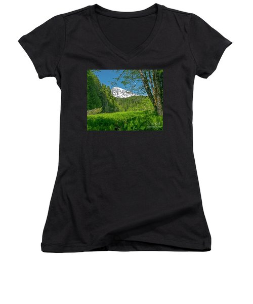 Longmire Meadows 0761 Women's V-Neck T-Shirt