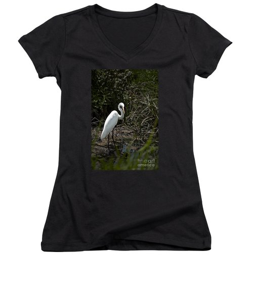 Women's V-Neck T-Shirt (Junior Cut) featuring the photograph Looking For Lunch by Tamyra Ayles