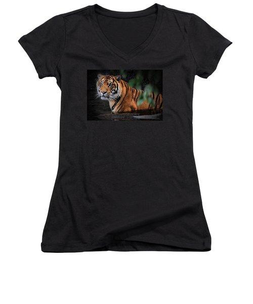 Looking Oh So Sweet Women's V-Neck T-Shirt (Junior Cut) by Kym Clarke