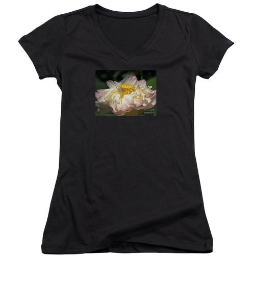 Lotus 2015 Women's V-Neck (Athletic Fit)