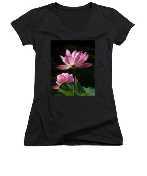 Lotus Beauties--upstaged Dl048 Women's V-Neck T-Shirt