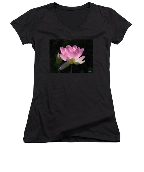 Lotus Bud--snuggle Bud Dl005 Women's V-Neck T-Shirt