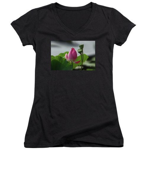 Lotus Flower In Pure Magenta Women's V-Neck T-Shirt (Junior Cut) by Yvonne Wright