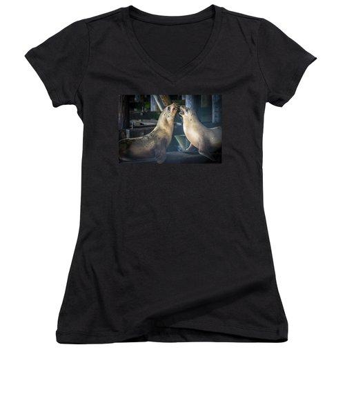 Harbor Seals Lovers Quarrel Women's V-Neck T-Shirt (Junior Cut) by James Hammond