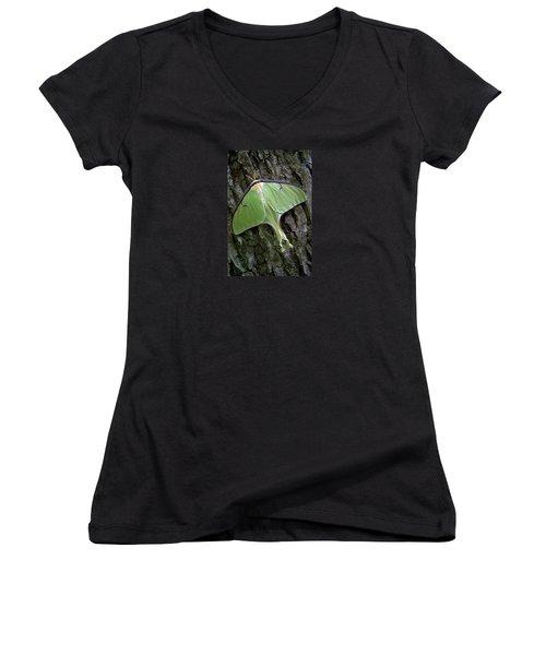 Luna Moth Women's V-Neck T-Shirt (Junior Cut) by Marie Hicks