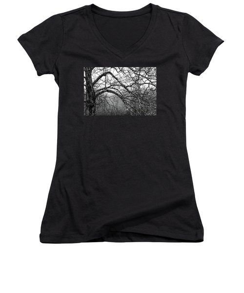 Women's V-Neck T-Shirt (Junior Cut) featuring the photograph Lure Of Mystery by Karen Wiles