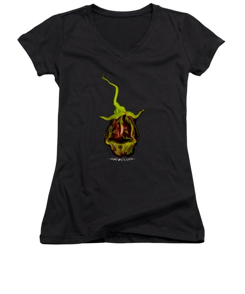 Magical Eggplant Transparency Women's V-Neck T-Shirt