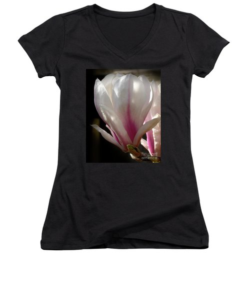 Magnolia Bloom Women's V-Neck T-Shirt (Junior Cut) by Stephen Melia