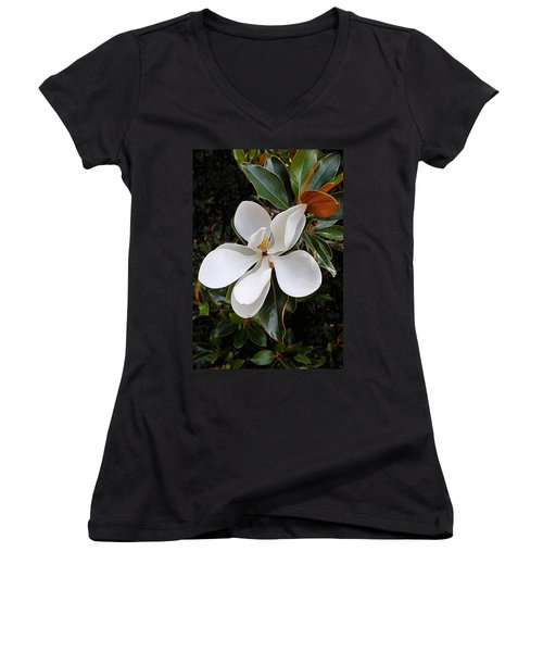Magnolia Blossom Women's V-Neck (Athletic Fit)