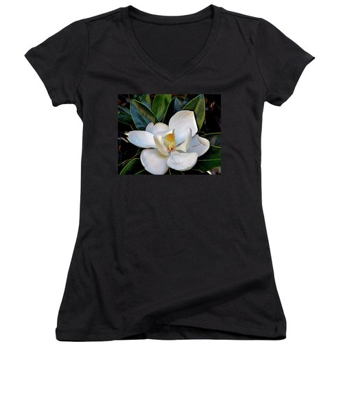 Magnolia Women's V-Neck T-Shirt (Junior Cut) by Helen Haw
