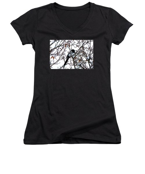 Magpie In A Snowstorm Women's V-Neck T-Shirt (Junior Cut) by Will Borden