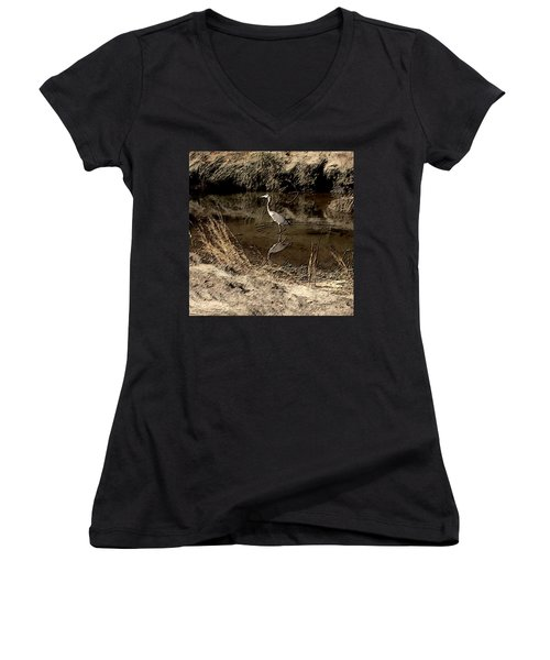Marsh Bird Women's V-Neck T-Shirt