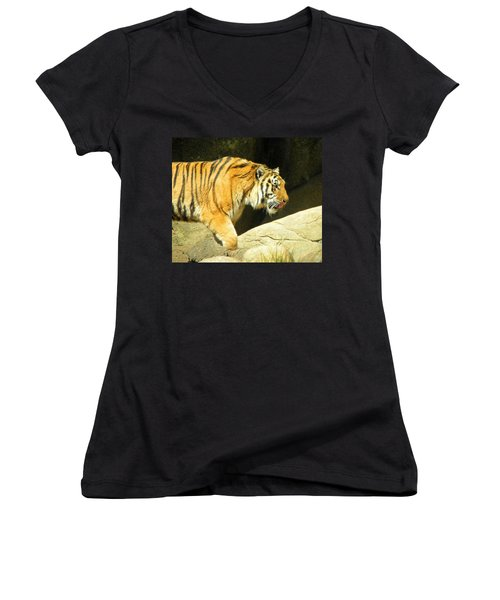 Women's V-Neck T-Shirt (Junior Cut) featuring the photograph Meal Time by Sandi OReilly