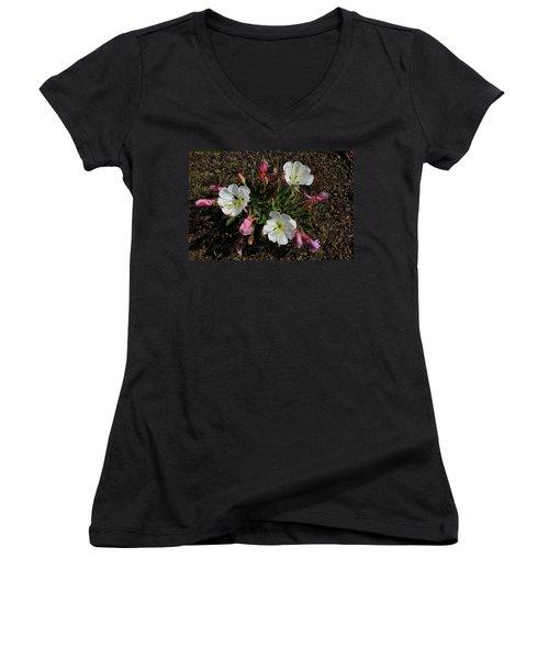 Mesa Blooms Women's V-Neck
