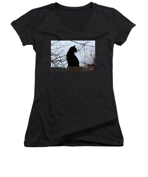 Midi 1 Women's V-Neck T-Shirt (Junior Cut) by Wilhelm Hufnagl