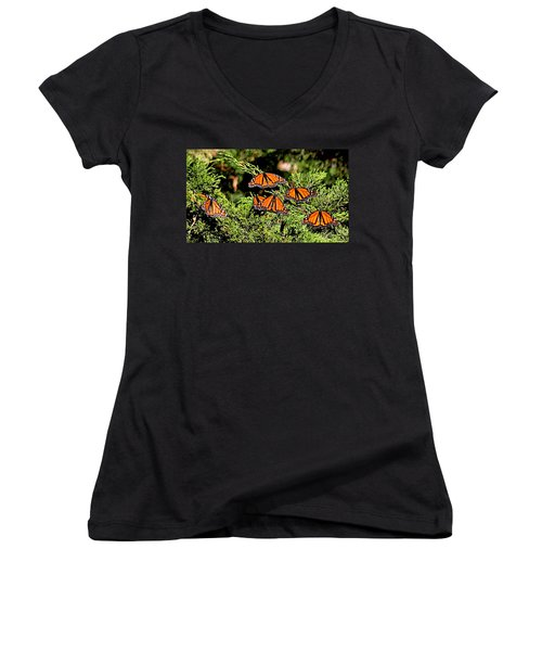 Women's V-Neck featuring the photograph Migrating Monarchs by AJ Schibig