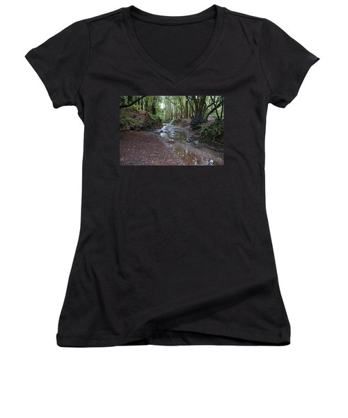 Miller Grove Women's V-Neck