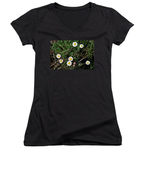 Women's V-Neck featuring the photograph Mini Daisies by Ron Cline