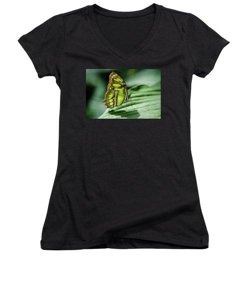 Miss Green Women's V-Neck T-Shirt (Junior Cut) by Nick Boren