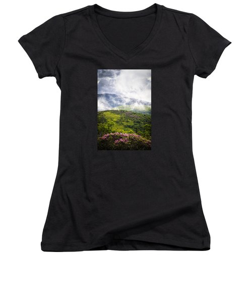 Rhododendrons - Roan Mountain Women's V-Neck T-Shirt